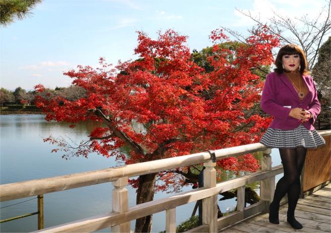 京都06/大覚寺.jpg